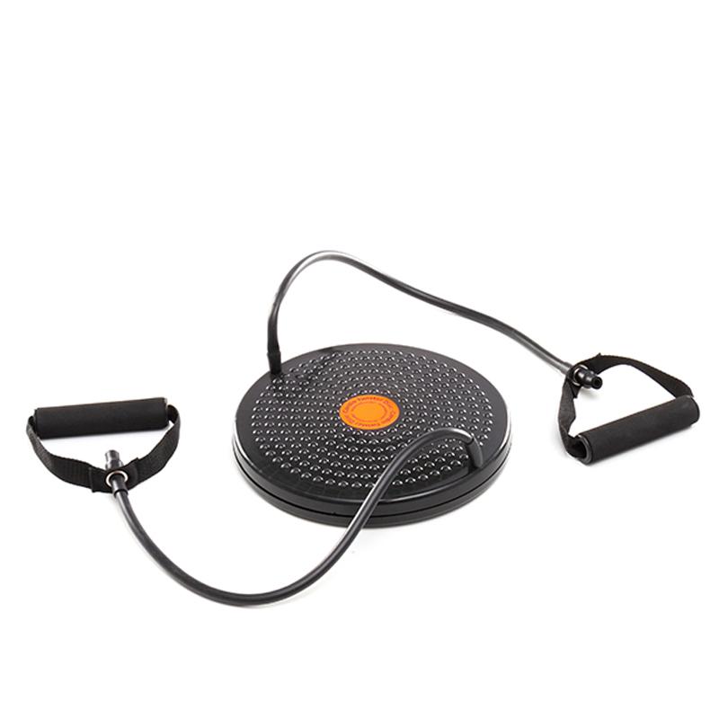 Cardio Twister Disc