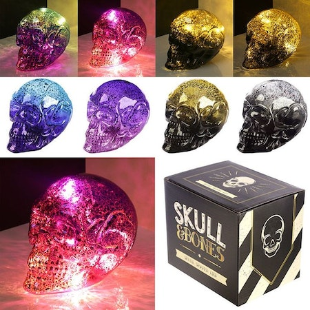 Skull and Bones Liten Metallic Tvåtonig LED Dödskalle