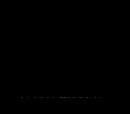 Utbildning Grundkurs Singelfransar inkl startkit & diplom