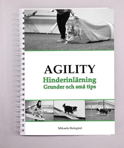 Agility - Hinderinlärning
