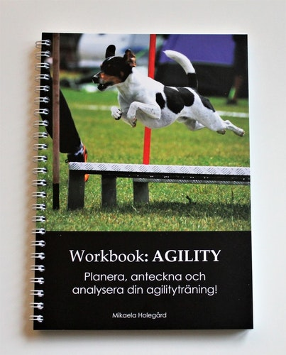 Workbook: AGILITY