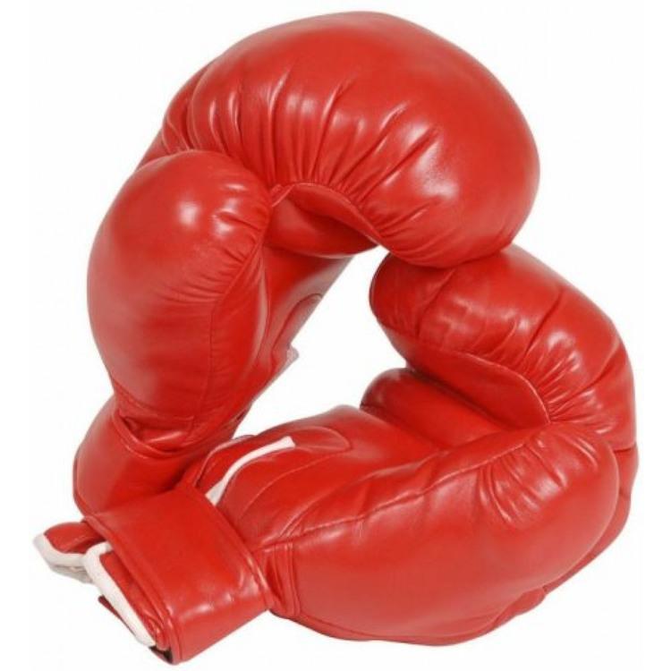 Röda Boxningshandskar Maskeradkläder
