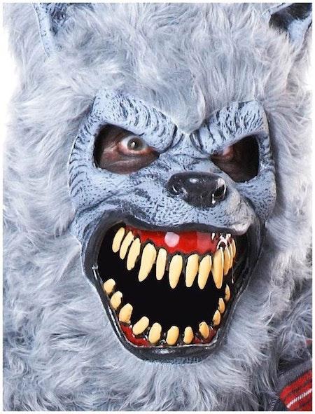 Varulv Grå Maskeraddräkt med ani-mono mask