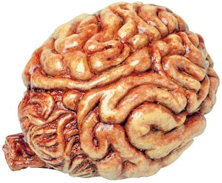 Hjärna Maskerad Halloween