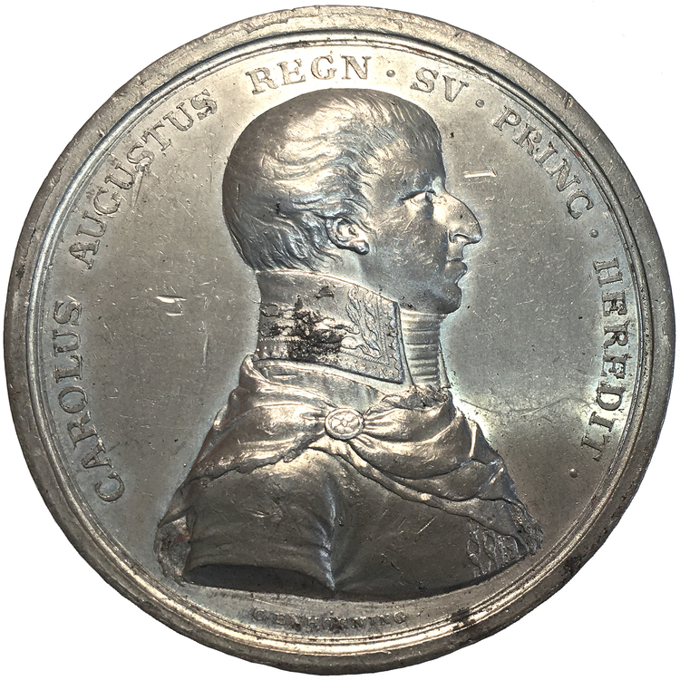Kronprinsens död på Qvidinge hed i skåne den 28 maj 1810 av Carl Enhörning  - RR