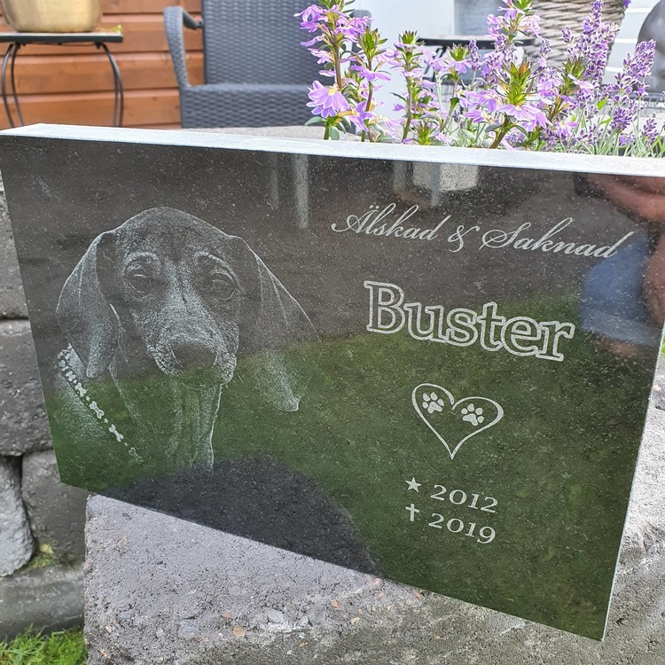 Minnessten i granit till ert kära husdjur med foto, lasergraverad