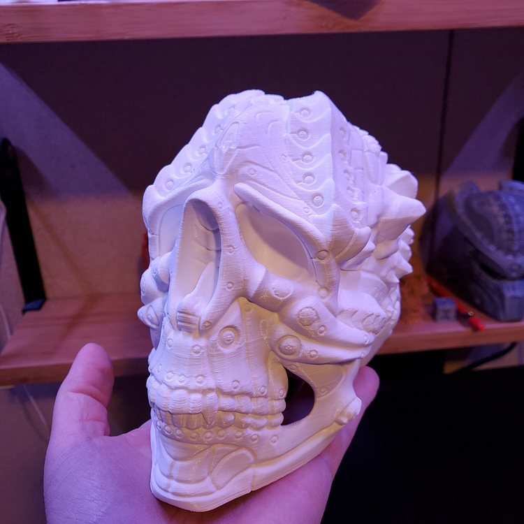 Skull X1
