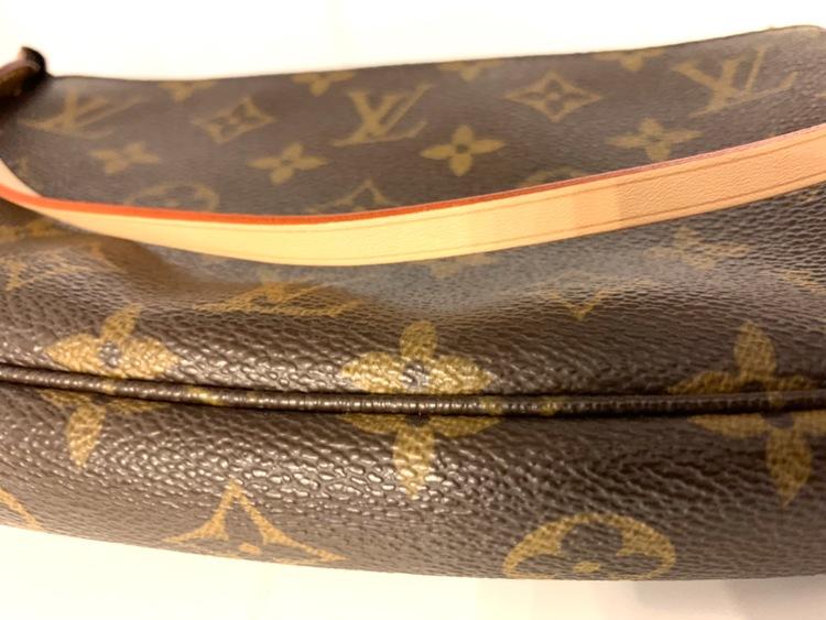 Louis Vuitton Pochette Accessoires Monogram Bag