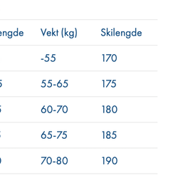 Åsnes Cecilie BC Fjellski ink bindning