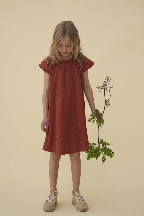 Soft Gallery - Dacia Dress Cinnabar AOP Dotty Emb