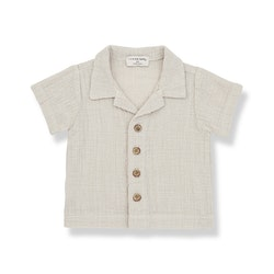 1+in the family DAVID S-Sleeve T-shirt Beige