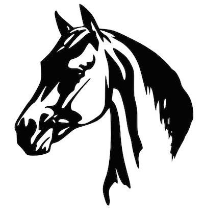 Dekor till hästtransport - Hästhuvud