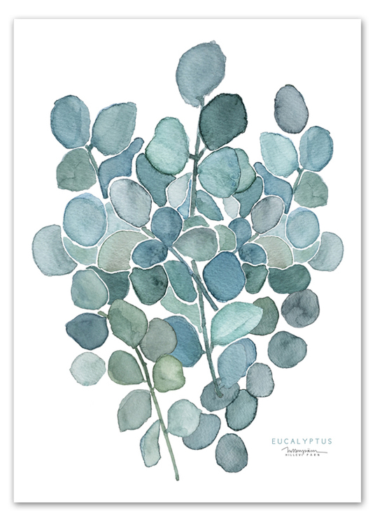 """Eucalyptus"" Tryck 50x70"