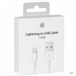 Blixt till USB-kabel (1m) Original