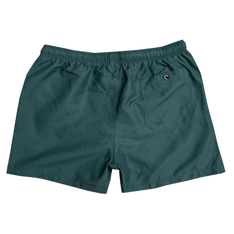 Green ocean swim shorts