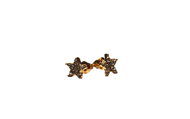 Stjärnörhänge i guldfärg