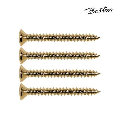 Halsskruvar 4 x 45 mm Boston TS-03-G