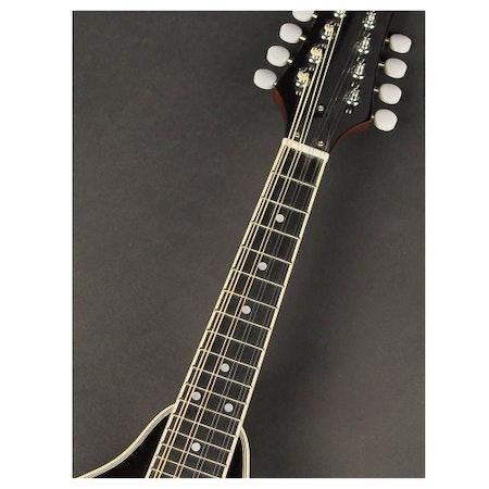 Mandolin Richwood RMA-60-VS