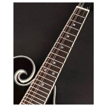 Mandolin Richwood RMF-60-VS