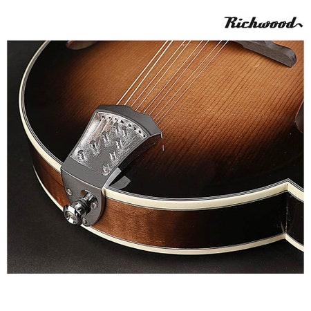Mandolin  Richwood RMF-100-VS