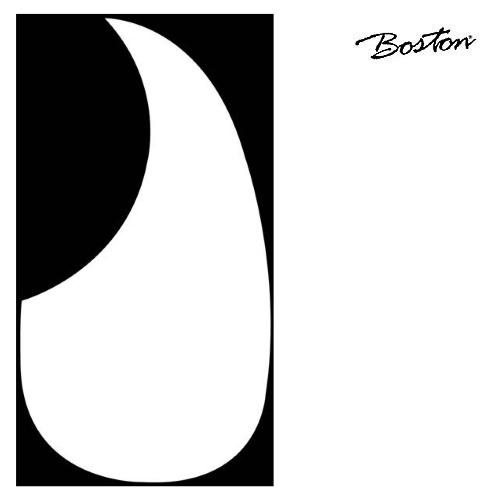 Plektrumskydd Boston AG-100-W
