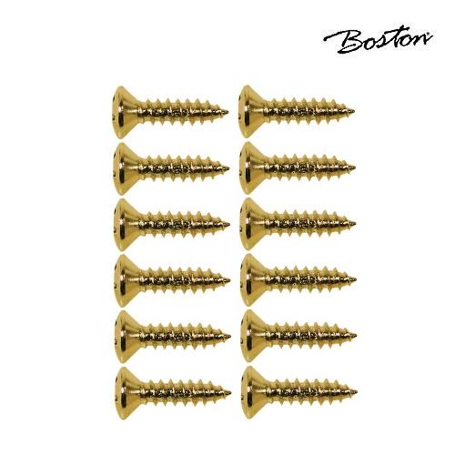 Skruv för plektrumskydd och plattor Boston TS-01-G