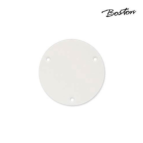 Boston LP switch back plate P-101-W