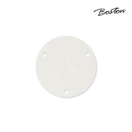 Boston LP switch back plate P-101-W