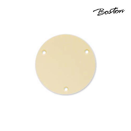 Boston LP switch back plate P-101-IV