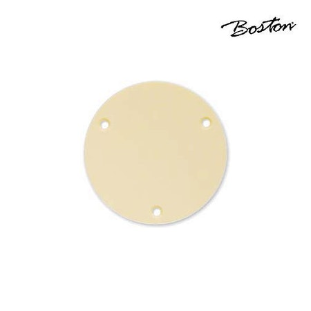 Boston LP switch back plate P-101-IV