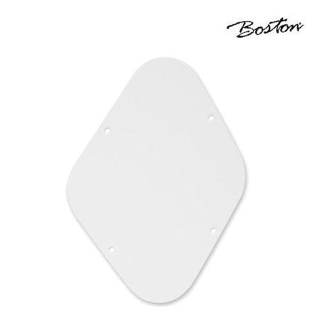 Boston LP electronic back plate P-102-W