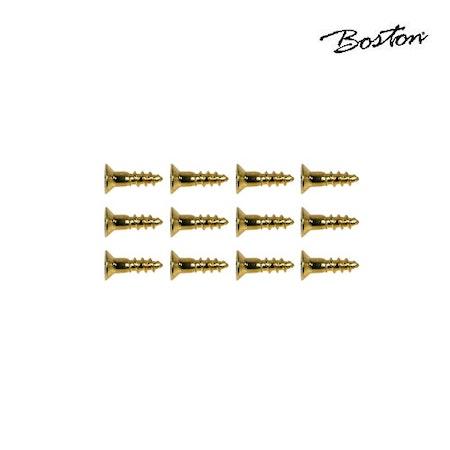 Skruv 2,4 x 10 mm Boston WS-10-G