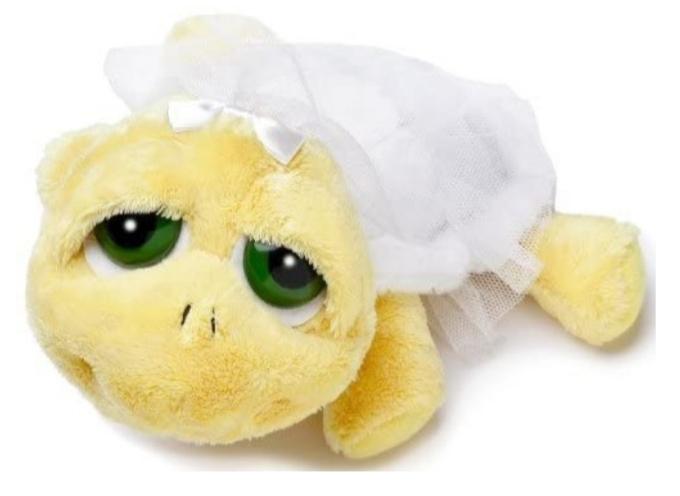 RUSS PLUSH TURTLE SHELLY BRIDE 20CM