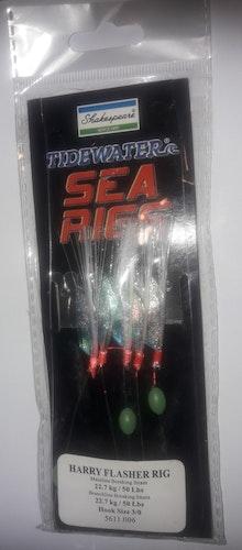 SEA RIGS