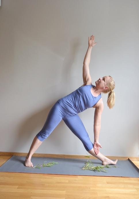 Smidiga och följsamma bambutights för träning och yoga