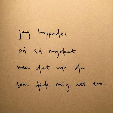 jag hoppades på så mycket, men det var du som fick mig att tro.