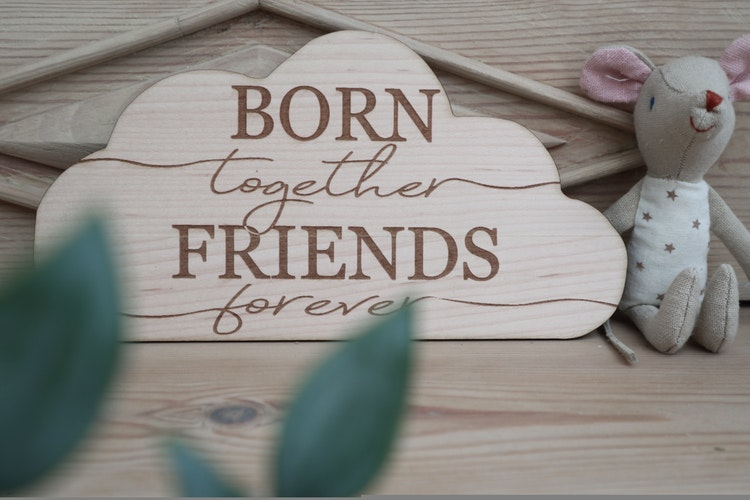 "Moln ""Born together, friends forever"""