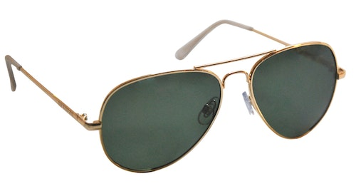 Toronto gold Polarized