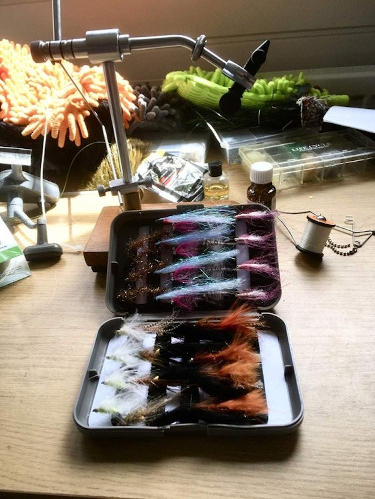 Havsöring | 40 st exklusiva flugor i slitfoam-ask
