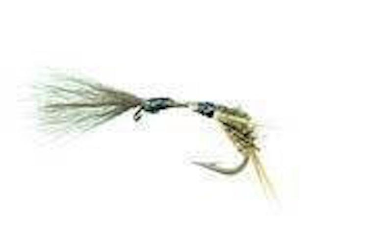 Kläckare-kollektion | 40 st exklusiva flugor i slitfoam-ask