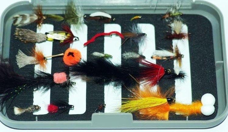 40 flugor i ask | de bästa för prickiga fiskar