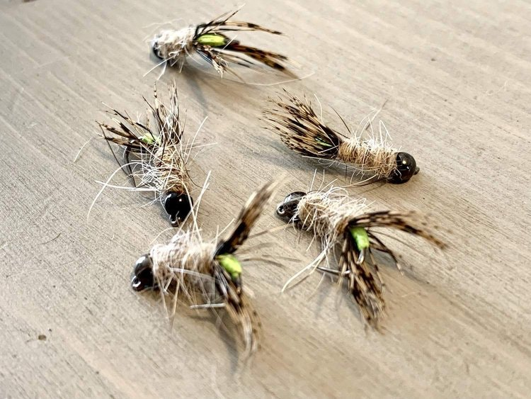 5st Peeping Caddis