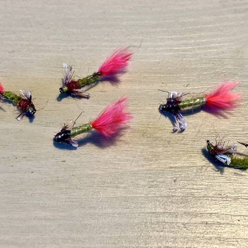 5st Fire Fart Caddis