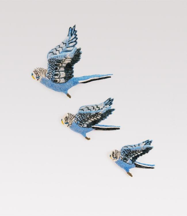 Flying blue budgies trio