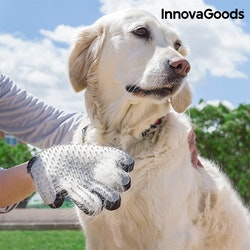 Borsthandske för Husdjur