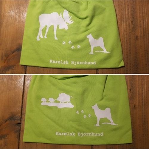 Karelsk björnhund älg eller vildsvin