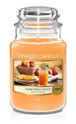 Yankee Candle - Farm Fresh Peach - Stort doftljus