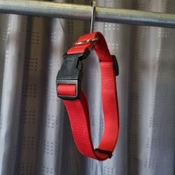 Halsband, 40 cm