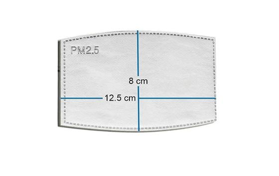 Filter till munskydd N95 - 2 pack