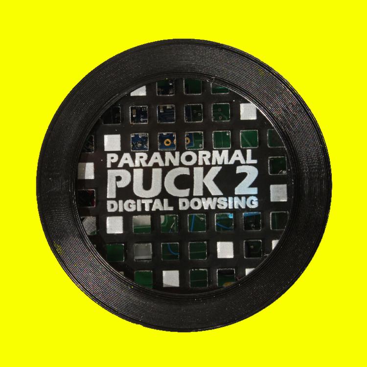 PARANORMAL PUCK 2